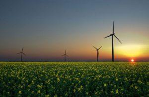 pe jn ri mot 112 300x196 - ظرفیت نصب شده نیروگاههای تجدیدپذیر به ۷۳۹ مگاوات رسید/ انرژیهای نو مانع انتشار ۲ میلیون تن گاز گلخانهای در کشور شده است